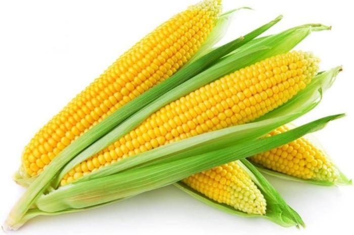 Selain mengandung banyak vitamin dan nutrisi yang penting bagi tubuh, jagung dinilai mampu mencegah penyakit kanker.