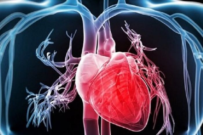 Tips agar terhindar dari penyakit jantung