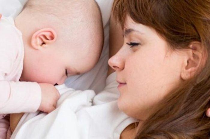 Hasil gambar untuk ibu menyusui minum susu