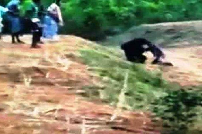 Prabhu Bharata diserang beruang saat ingin selfie