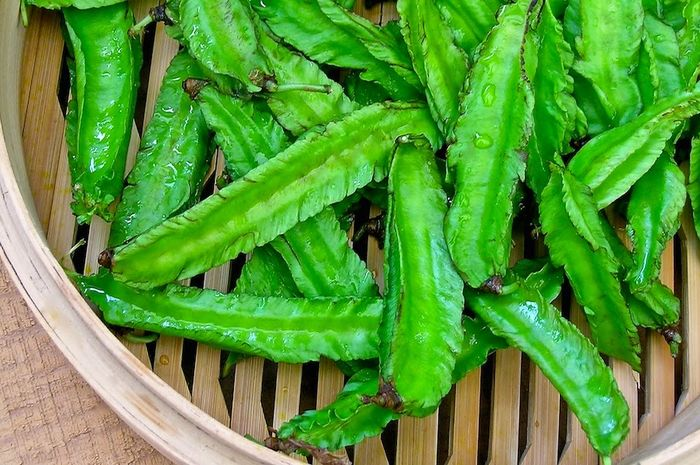 7 manfaat mengonsumsi sayuran hijau kecipir untuk kesehatan tubut dan kecantikan kulit