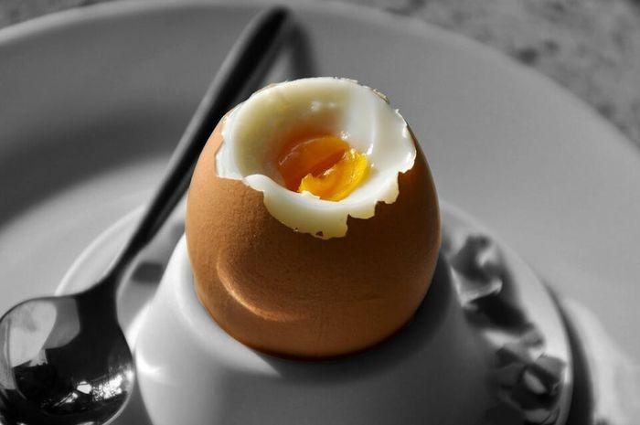Konsumsi 2 butir telur setiap hari dan banyak manfaat menunggumu