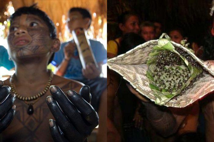 Remaja yang akan beranjak dewasa harus merelakan tanganya disengat ratusan semut peluru.