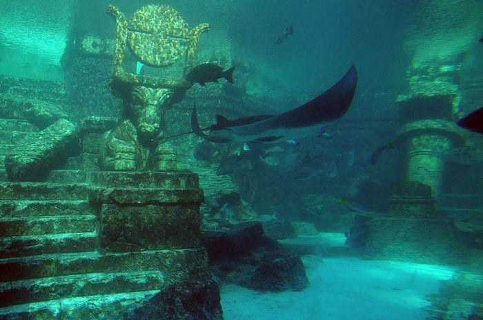 Ilustrasi benua Atlantis yang hilang karena bencana alam.