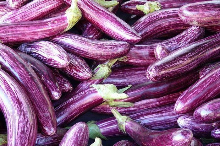 Dalam bahasa inggris terong ini dinamakan eggplants