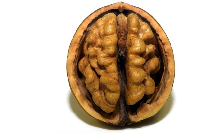 Walnut yang sering dijuluki brain food