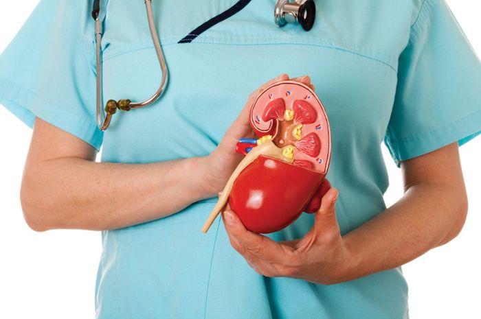 Transplantasi ginjal