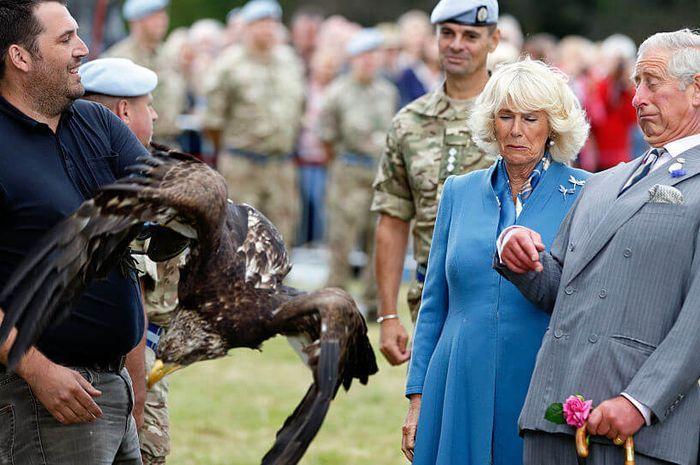 Camilla dan Charles terkejut saat berada dekat dengan burung Elang