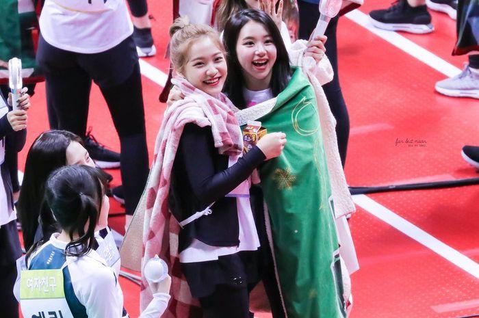 Red Velvet dan TWICE