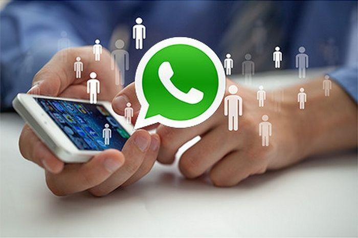 pengguna WhatsApp