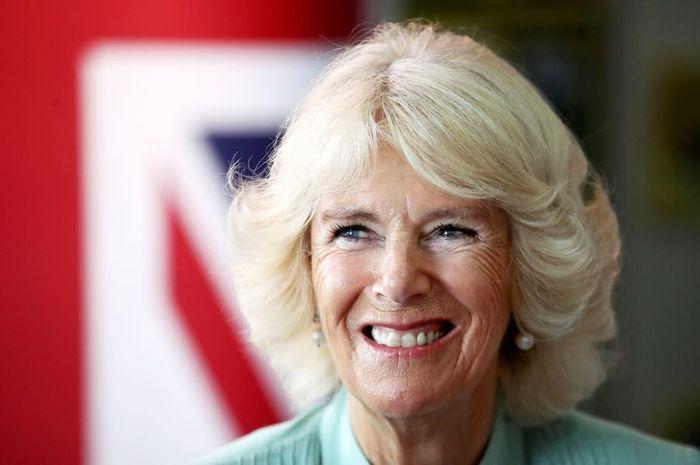 Penghasilan Camilla