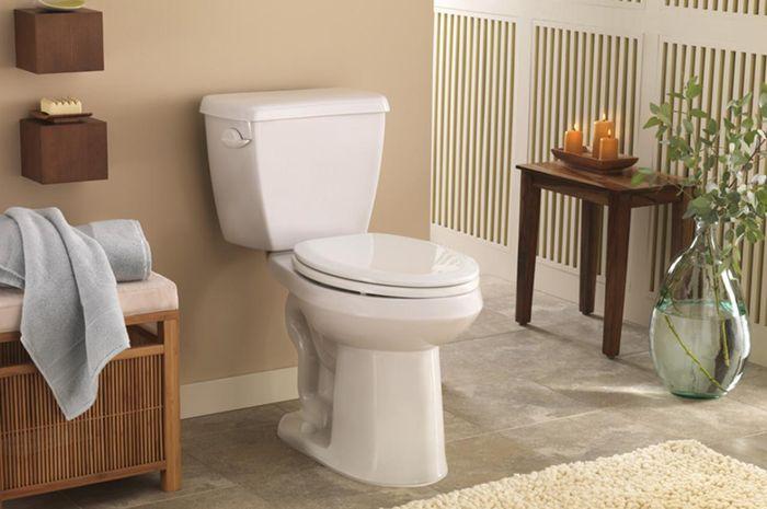 toilet | dok. hgtv.com