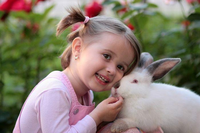 Tips memelihara kelinci