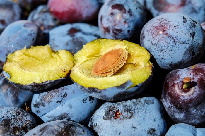 Manfaat buah plum untuk turunkan berat badan dan kehamilan