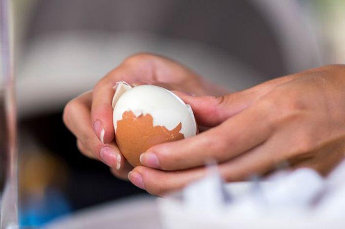 Amankah mengonsumsi telur dan daging saat sarapan? Simak faktanya!