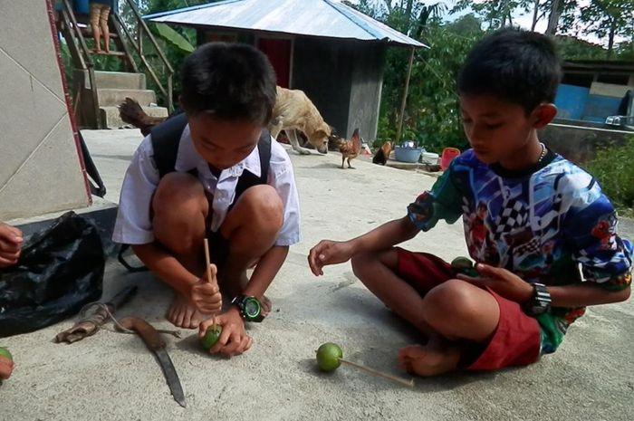Anak-anak di Tana Toraja membuat gasing dari jambu