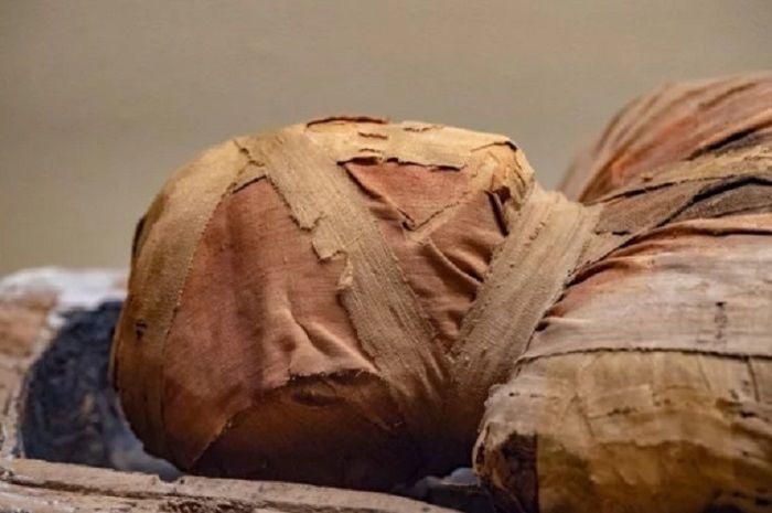 Mumia vera aegyptiaca, bubuk yang terbuat dari mumi dianggap sebagai obat yang eksotis.