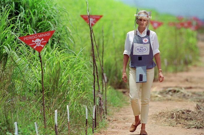 Putri Diana berjalan melalui ladang ranjau