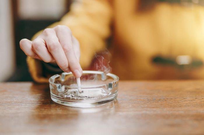 Makanan yang dapat membantu membersihkan organ paru-paru si perokok