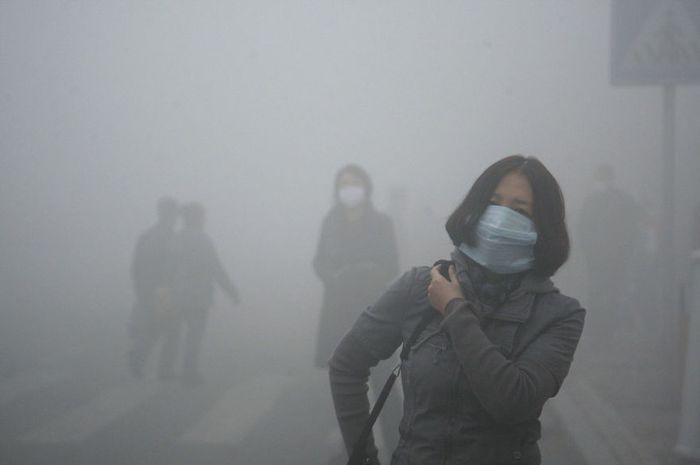polusi udara juga berbahaya untuk ginjal