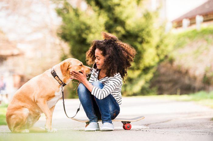Ilustrasi anak memelihara anjing
