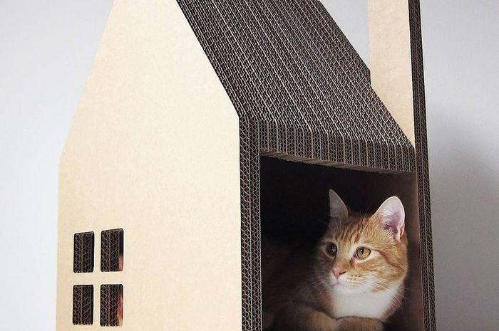Krabhuis, rumah kucing berbahan kardus.