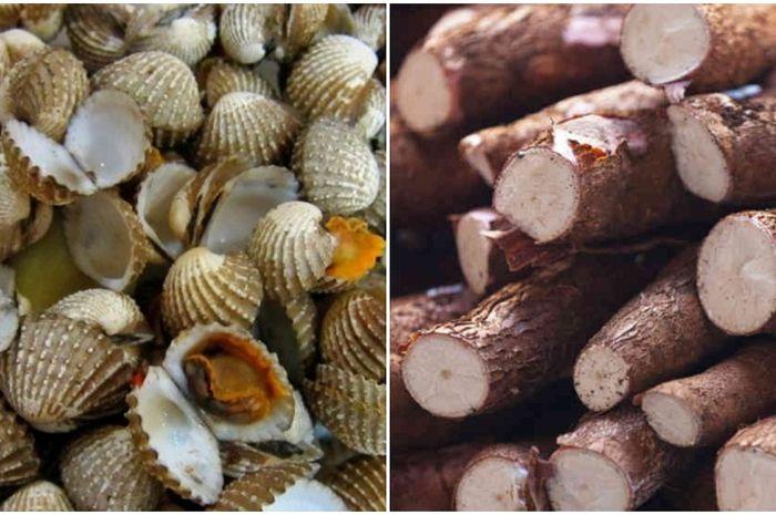 Kerang darah dan singkong adalah dua makanan yang sering kali dikonsumsi oleh masyarakat Indonesia.