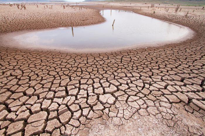 Perubahan iklim berdampak pada krisis air di dunia.