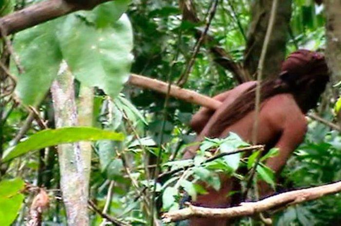 Gambar sekilas penyintas suku terasing di hutan Amazon.