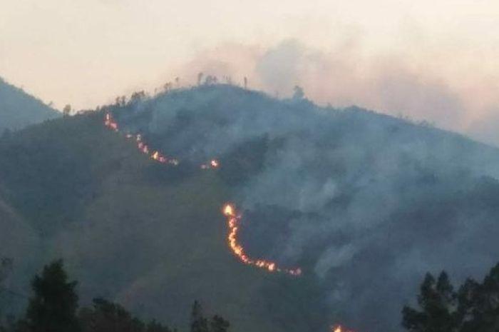 Kebakaran di kawasan hutan Gunung Lawu.