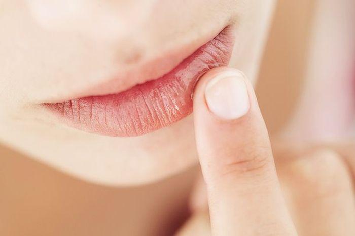 Ingin Bibir Lembut dan Lembab, Coba Buat Resep Sederhana Ini!