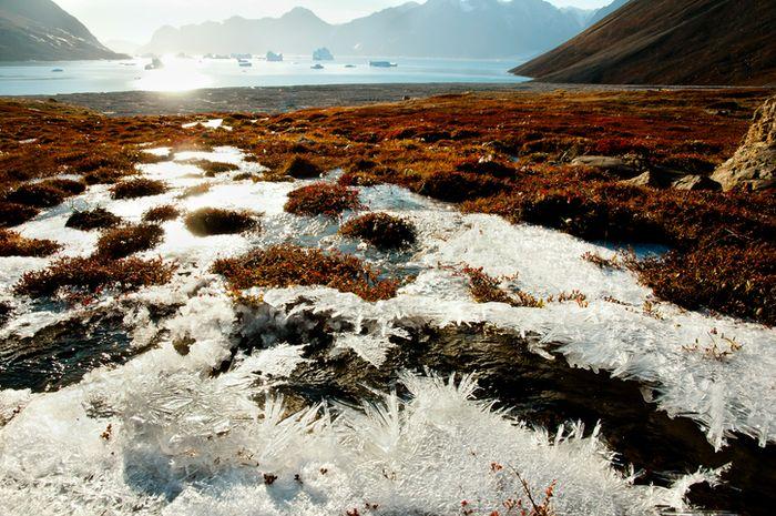 Ilustrasi permafrost.