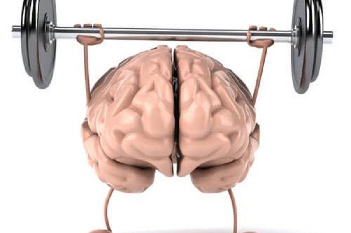 Kebugaran otak didapat dari fisik juga