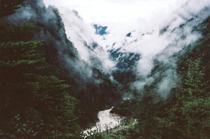 Sekitar 72% wilayah Bhutan dikelilingi oleh hutan.