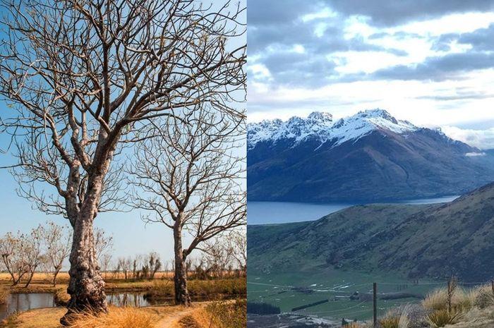 ilustrasi musim kemarau dan musim salju