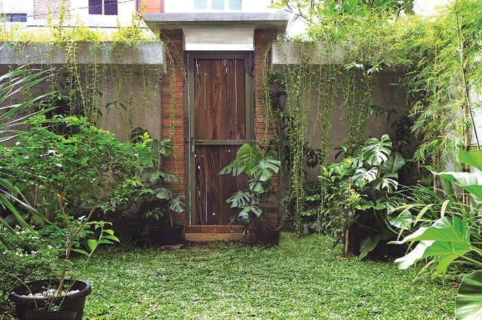Inpirasi Desain Taman Bali Rumah Di Tengah Kota Simpel Dan
