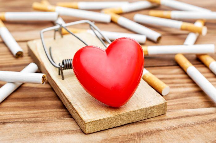 Jantung akan terdampak dari kebiasaan merokok.