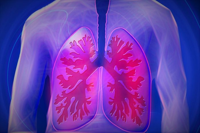 Tanda permasalahan paru-paru