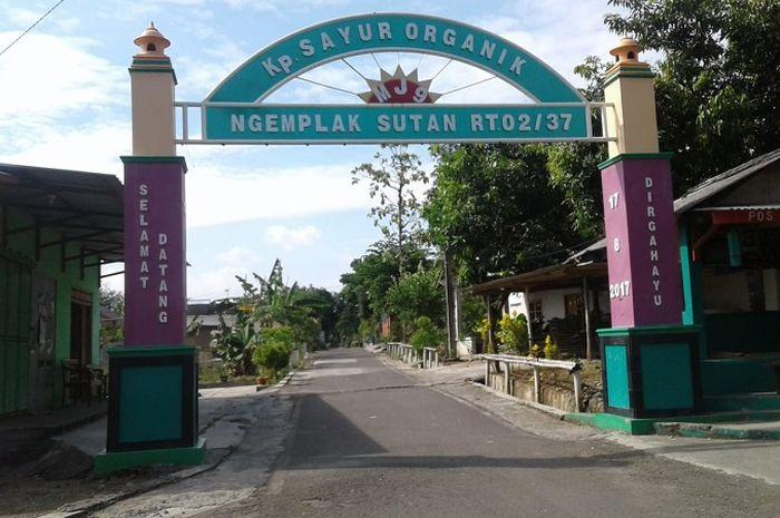 Kampung sayur organik di Mojosongo, Solo. (Dok. Nasyiah Hasanah)