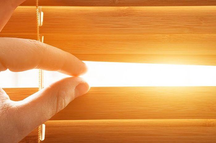 Cara membasmi matahari