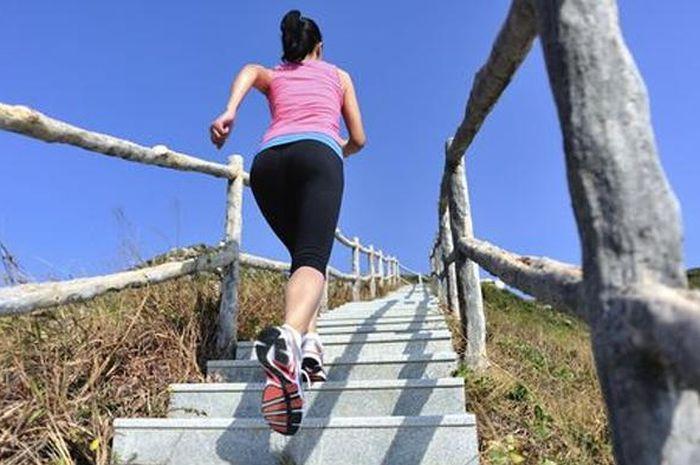 naik tangga bisa menjadi pilihan olahraga yang cocok untuk  mereka yang tak punya banyak waktu untuk