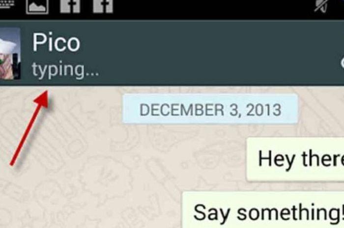 Begini Cara Menyembunyikan Status Typing Saat Membalas Pesan WhatsApp