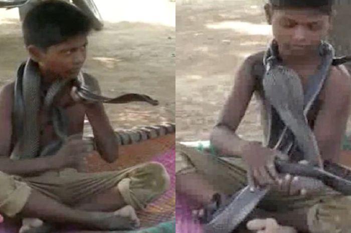 Bocah India dengan teman ular kobranya