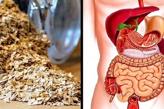 Manfaat konsumsi oat setiap hari