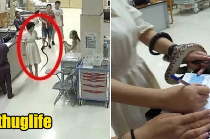 Wanita membawa ular ke rumah sakit
