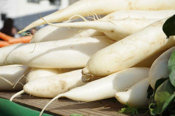 Manfaat lobak untuk menurunkan berat badan