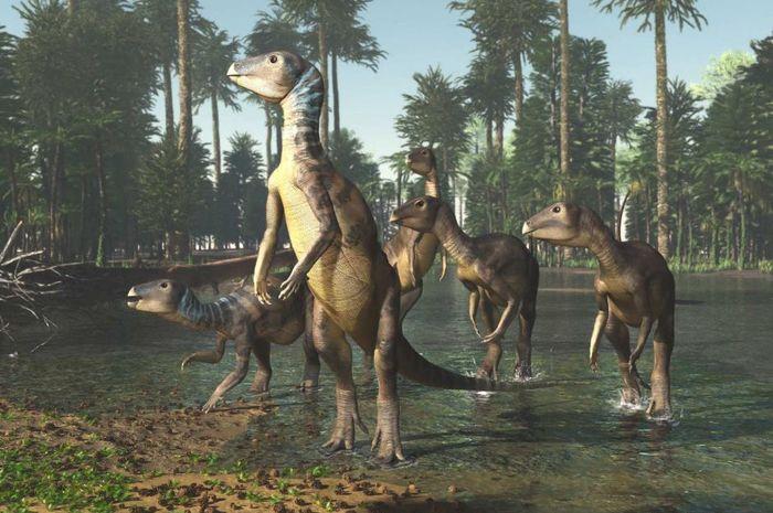 Penggambaran dinosaurus Weewarrasauras pobeni di tabang opal, New South Wales, Australia
