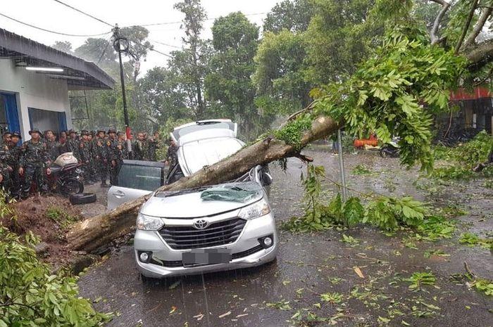 Bogor Disapu Angin Puting Beliung, Seorang Ibu Meregang Nyawa Tertimpa Pohon Saat Jemput Anak ke Sekolah