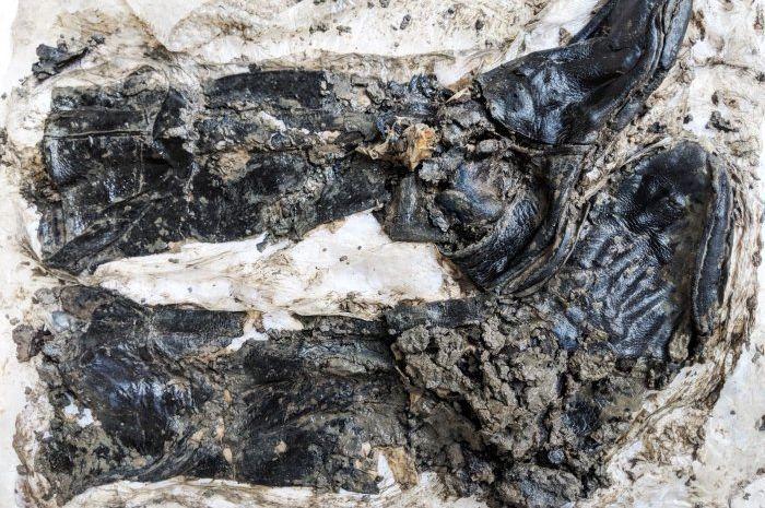 Penemuan kerangka manusia 500 tahun lalu memekai sepatu bot setinggi lutut