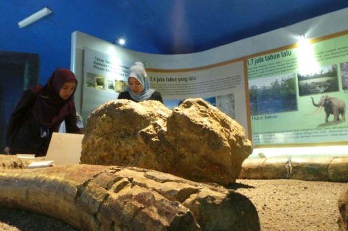 Wisata sejarah di Museum Sangiran, Sragen, Jawa Tengah.